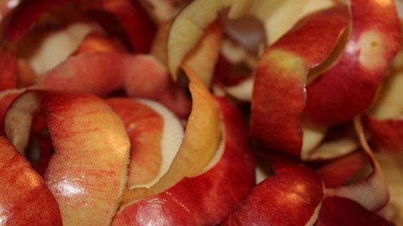 사과 껍질
