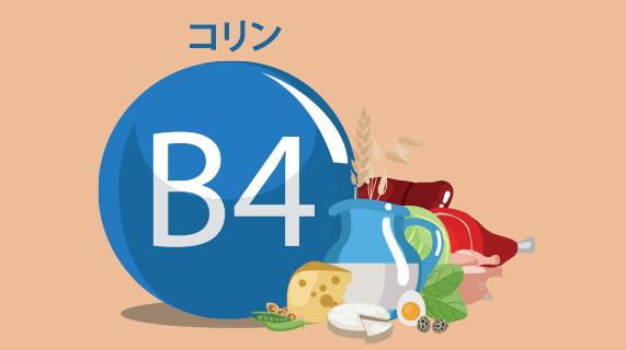 最も必須のビタミン B の名称が変更された理由