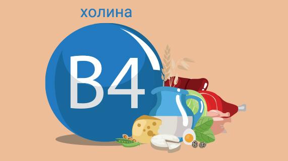 Почему был переименован самый важный витамин B