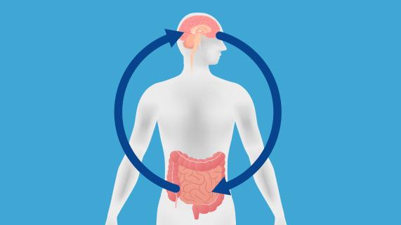 뇌와 장 사이의 연관성