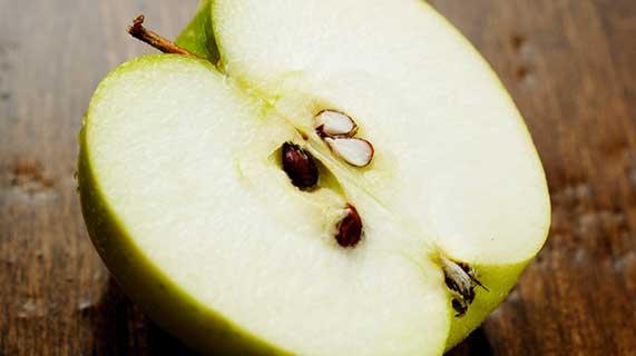 pépins de pomme
