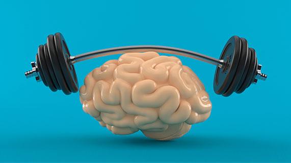 muscles et cerveau