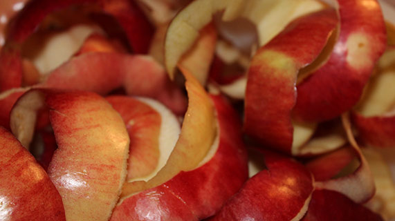 quercétine peau de pomme
