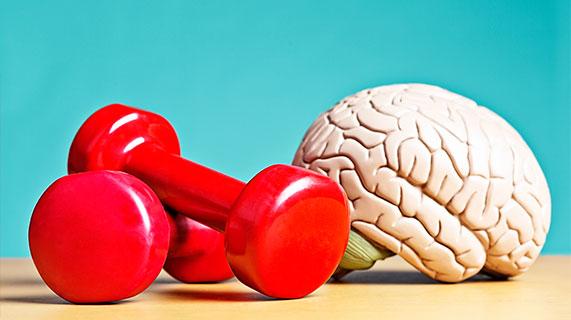 스포츠와 뇌