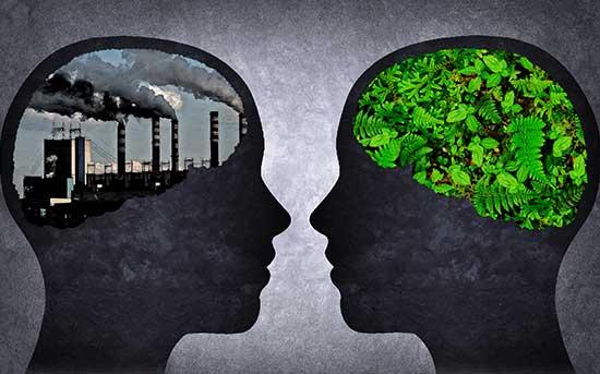 두 가지 뇌