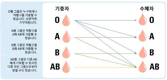 수혈 혈액형