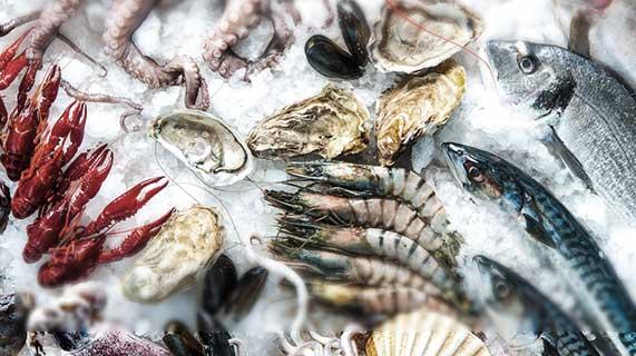 meilleurs fruits de mer