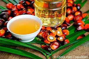 ヤシ(パーム)油脂肪たっぷりで味の良い熱帯のスーパーフード