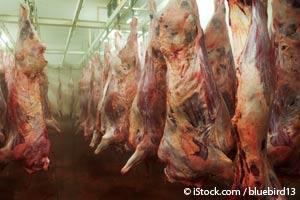 感染した工場式農場畜産肉がアルツハイマー病の別の原因因子である可能性