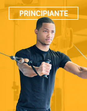 Fitness Plan Beginner