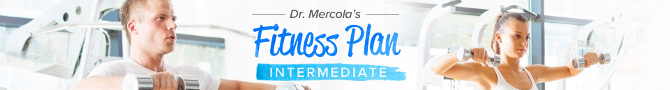 Fitness Plan - Intermediate