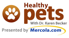 Mercola Healthy Pets High-Res Logo