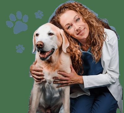 Dr. Karen Becker - Pet Digestive Headquarters