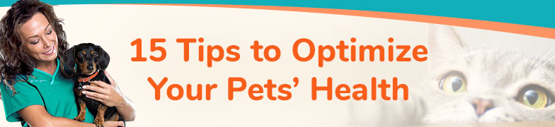 15 Tips to Revolutionize Your Pets' Health