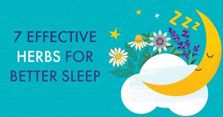 Effective Herbs for Better Sleep
