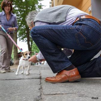 Inclinar Sobre los Perros