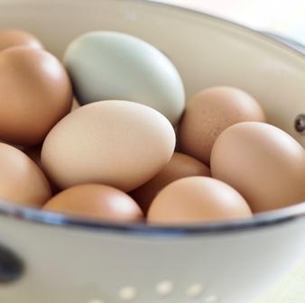 Uova biologiche da galline allevate al pascolo