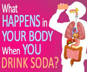 What happens in your body when you drink soda?